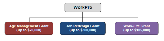 workpro_process